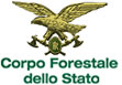 Corpo forestale 1